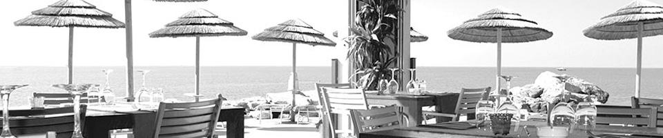 ristorante-delfino.jpg