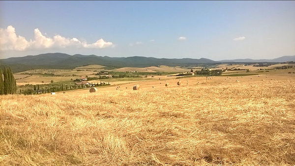 panorama giallo