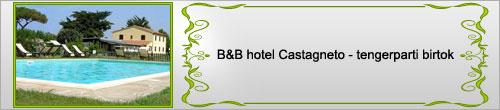 hotel castagneto